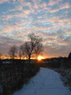 2009 Contest Photo of Sunset at MCP Wetlands by Louise Gladkowski