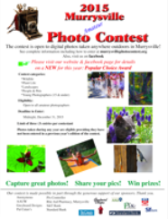 2015 Contest Poster