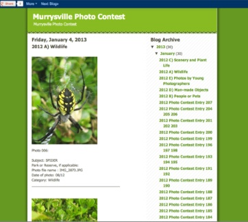 Photo contest blog